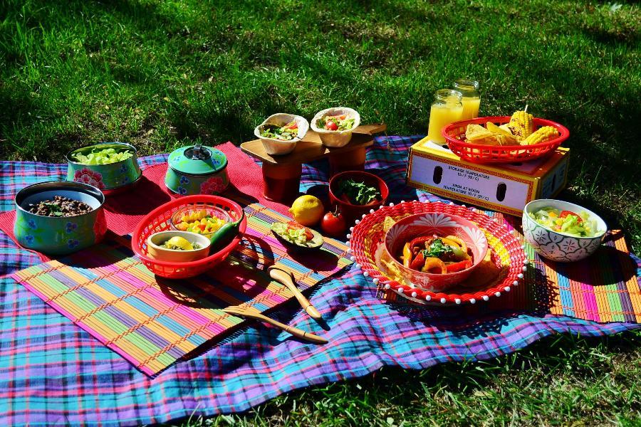 绿源会员日|人间四月天,一起野餐吧!