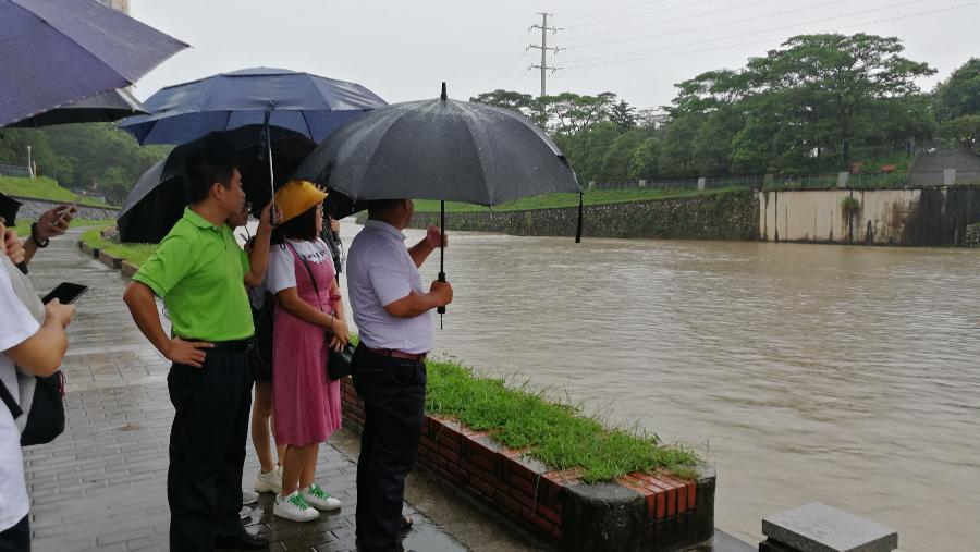 民间河长|厦门大学生雨中共巡观澜河