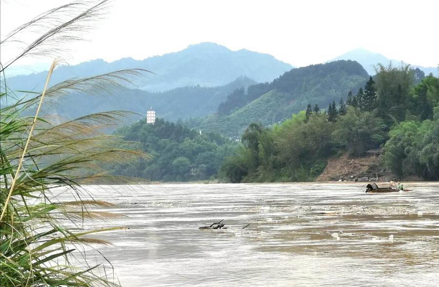 共爱珠江 | 寻找一个人的西江