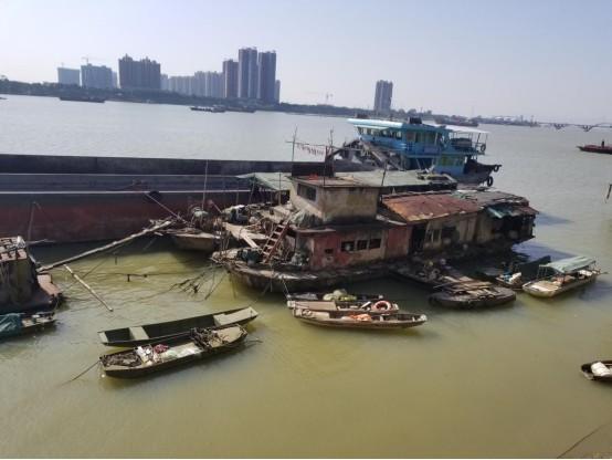 共爱珠江|2018年第一季度项目简报