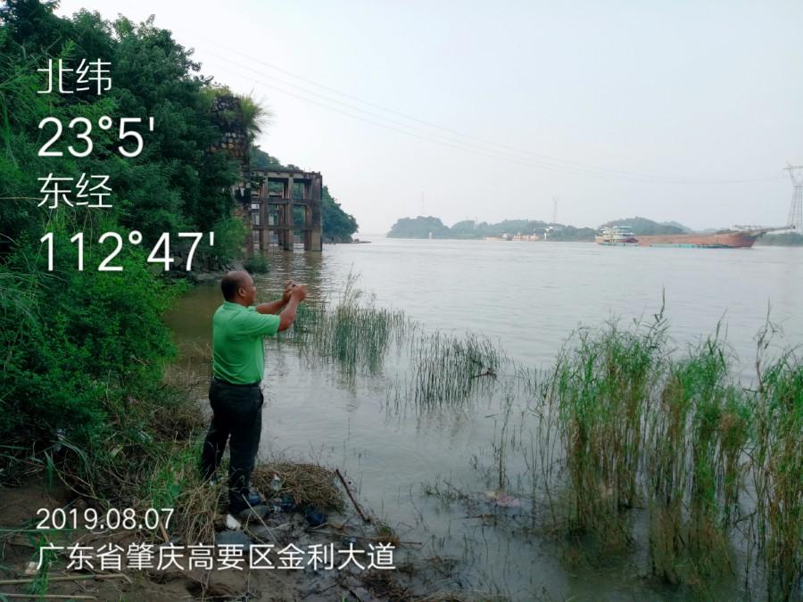 共爱珠江 | 西江(肇庆段、江门段)调研